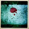 Qué es la anemia