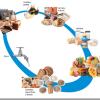 Nutricion | ¿Que son los nutrientes?