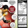 """El virus de la gripe, """"Paraliza el Sistema Inmunológico"""""""