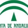 Ley de Dependencia en Andalucía