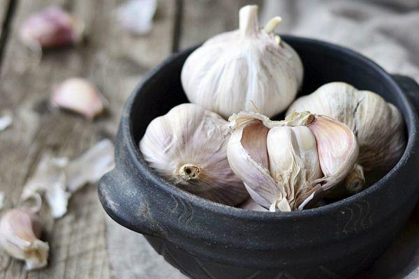 230-plantas-medicinales-mas-efectivas-y-sus-usos-ajo