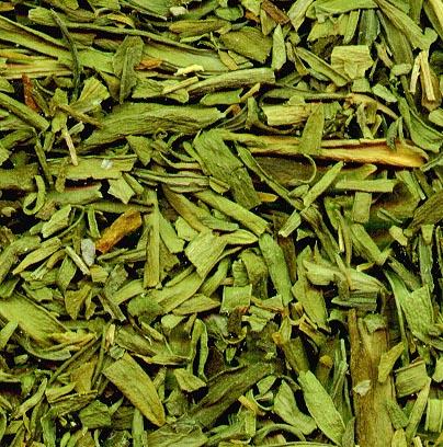 230-plantas-medicinales-mas-efectivas-y-sus-usos-estragon-hojas