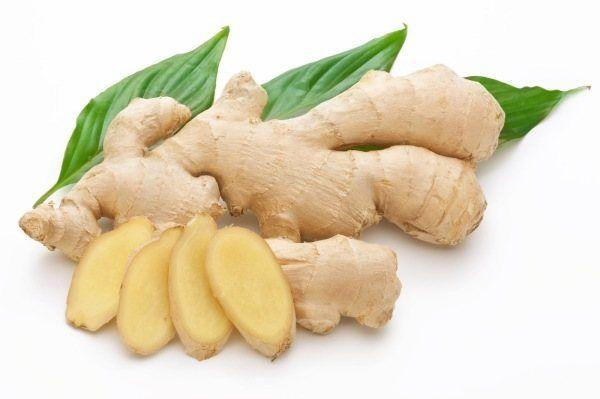 230-plantas-medicinales-mas-efectivas-y-sus-usos-jenjiber-raiz