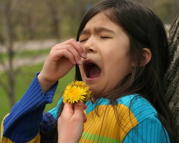 Alergias hereditarias