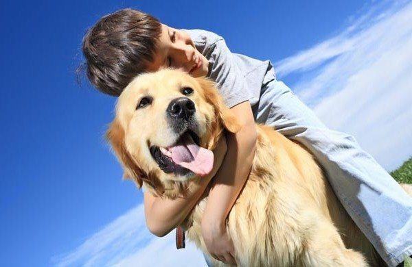¿Sabías que tener mascotas en casa es beneficioso para nuestra salud?