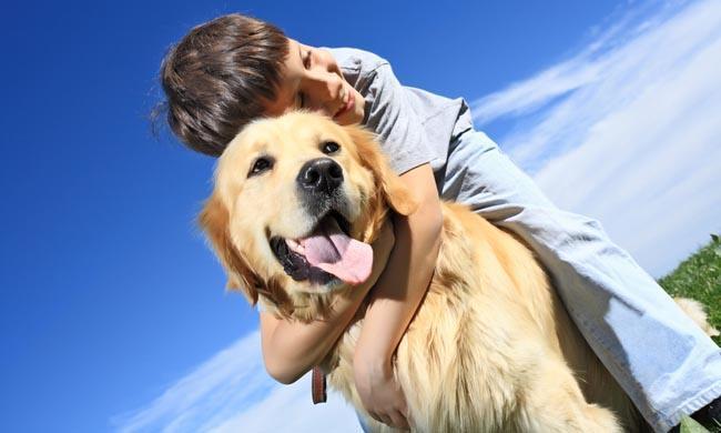 Sab as que tener mascotas en casa es beneficioso para nuestra salud - Perros para tener en casa ...