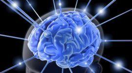 ¿Qué es la Fosfatidilserina? Propiedades, beneficios y contraindicaciones