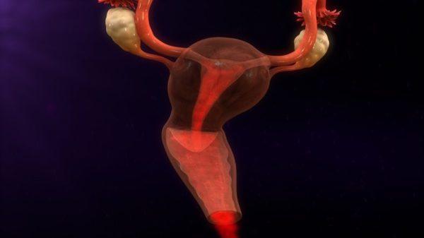 Progesterona efectos secundarios progesterona vaginal