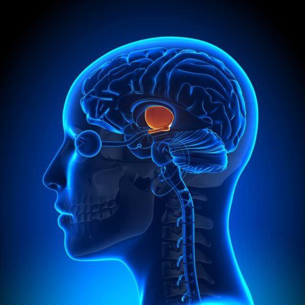 Prolactina baja sintomas tumor en la hipofisis
