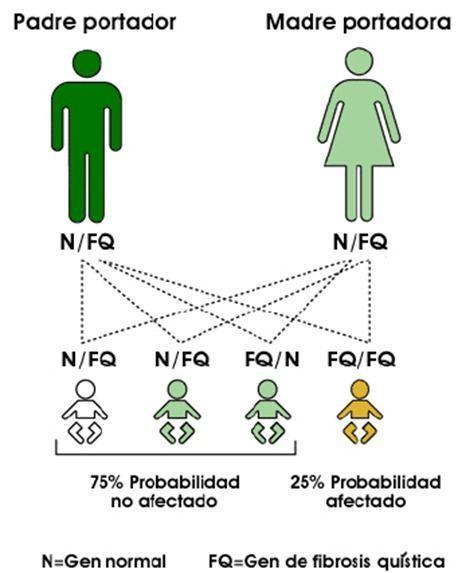 Que-es-como-se-transmite-fibrosis-quistica