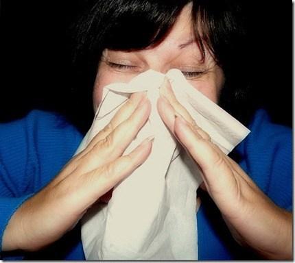 Resfriado o gripe3