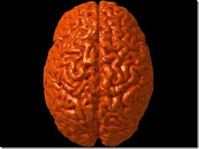 Tipos de demencia3