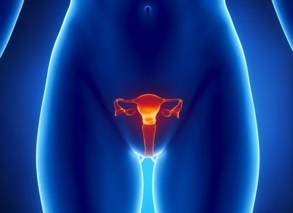 Tratamiento para la candidiasis infecciones vaginales
