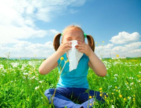 alergias-su-relacion-con-la-primavera