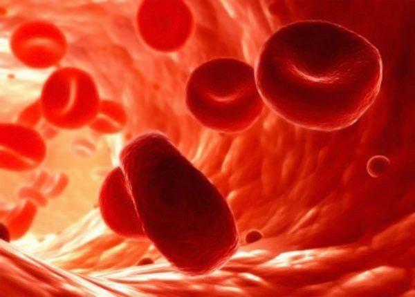 anemia tratamiento
