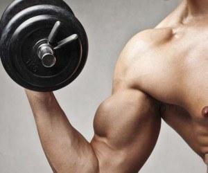 Los beneficios del Fitness