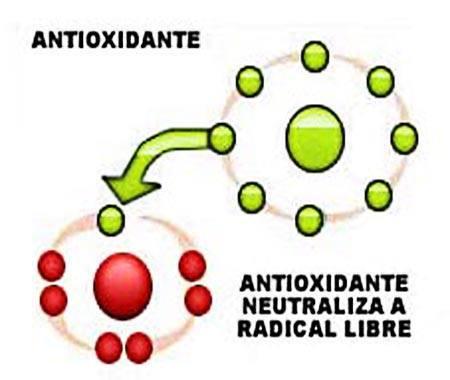 beneficios-de-los-antioxidantes