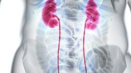 Piedras en la vesícula: cólico biliar y litiasis biliar