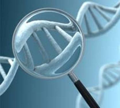 Nuevo método para detectar síndrome de Down y de síndrome de Edwards, en estudio