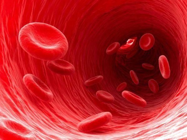 como-bajar-los-niveles-altos-de-creatininia-ph-sanguineo