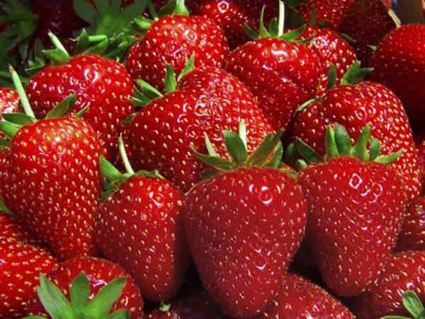 como-eliminar-el-acido-urico-de-forma-rapida-fresas