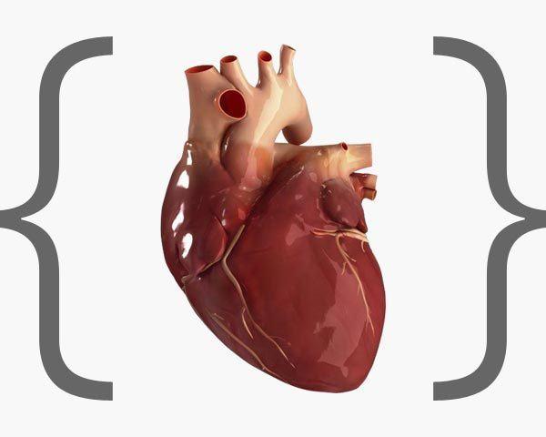 disruptores-endocrinos-enfermedades-cardiovasculares