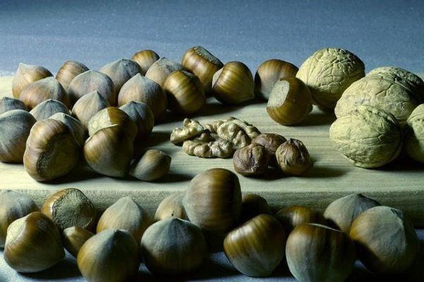 el-magnesio-reduce-el-cansancio-y-la-fatiga-frutos-secos
