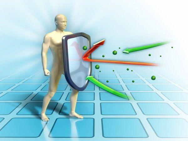 el-sistema-inmunologico