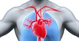 Endocarditis bacteriana: Causas, Síntomas y Tratamiento