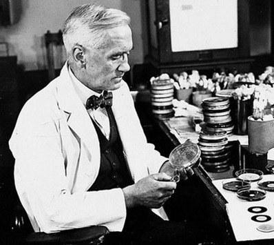 fleming descubre penicilina
