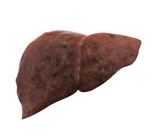 Higado graso sintomas causas y tratamiento funciones del higado
