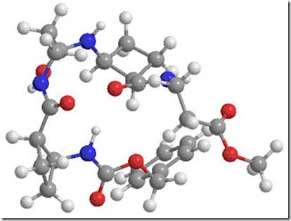 Aminoácidos esenciales y no esenciales