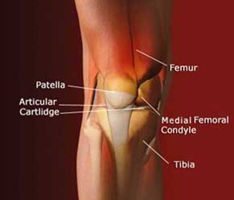 knee-injury