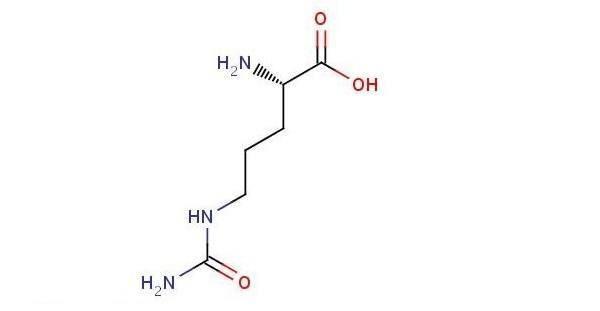l citrulina