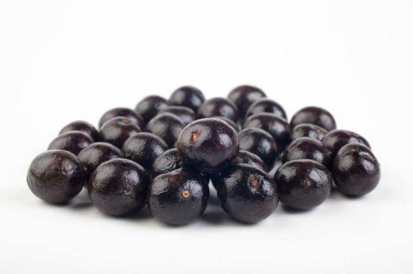 las-bayas-acai-berry