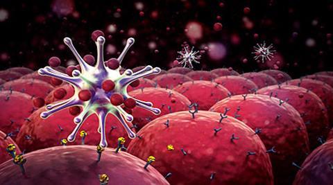 las-celulas-del-sistema-inmunologico