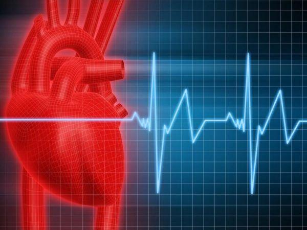 los-efectos-secundarios-de-la-l-carnitina-contraindicaciones-taquicardia