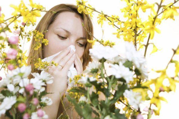 los-remedios-caseros-para-aliviar-los-sintomas-de-la-alergia