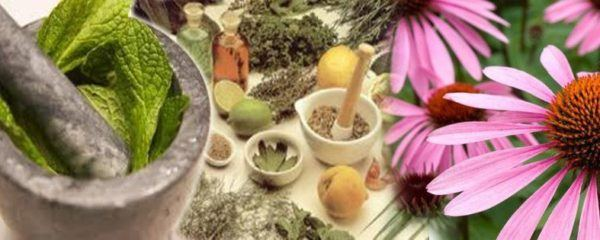 medicina-tradicional-china-principales-tecnicas-terapeuticas-fitoterapia