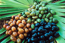 prostatitis-tratamiento-saw-palmetto