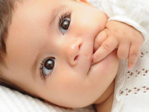 pulsatilla-para-bebes