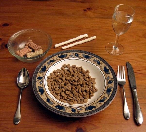 que-pasa-si-comemos-comida-para-perro