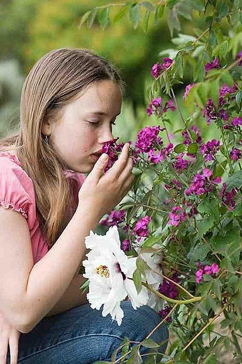 smellingflowers