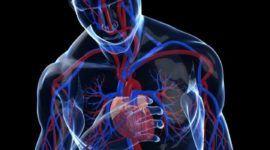 Taquicardia: por qué se produce, tipos y tratamiento