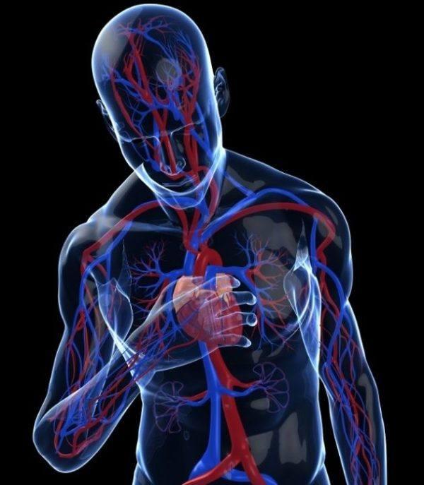 taquicardia-y-su-tratamiento