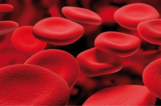 valores-del-hemograma