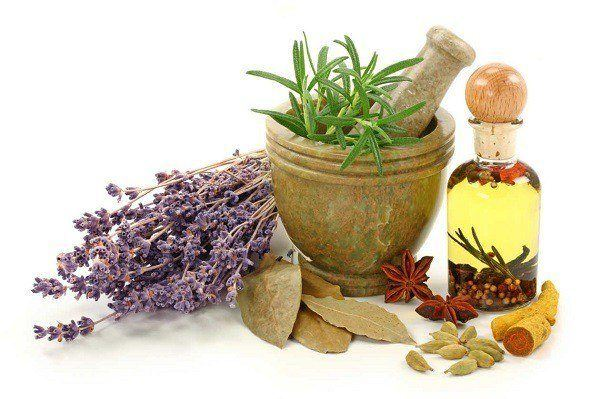ventajas plantas medicinales